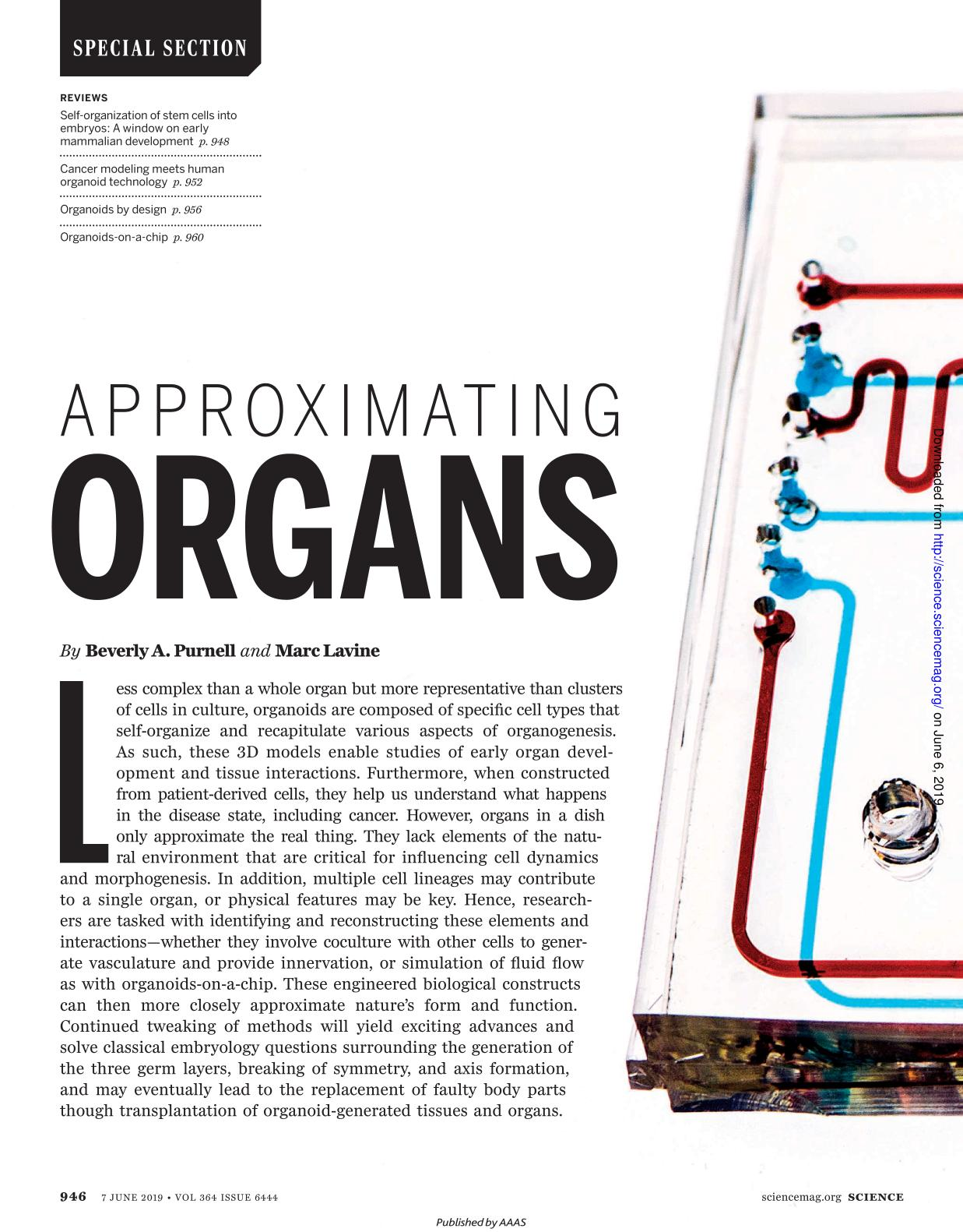 Book cover Approximating organs