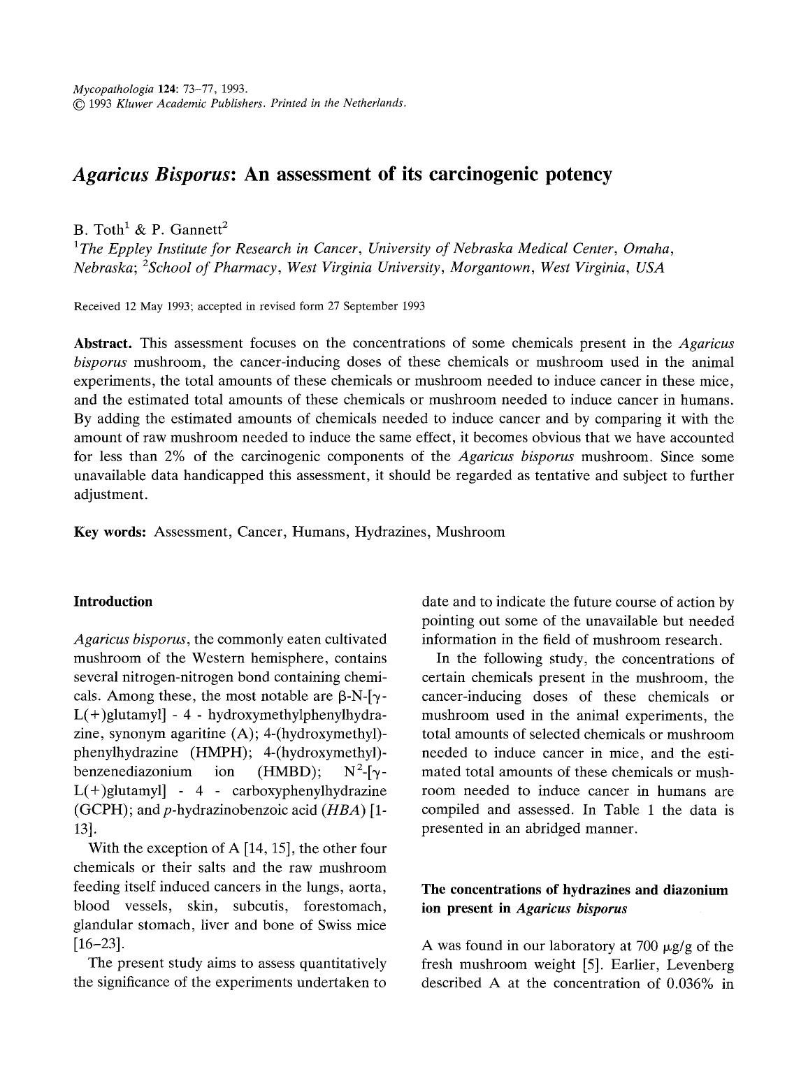 Book cover Agaricus Bisporus: An assessment of its carcinogenic potency