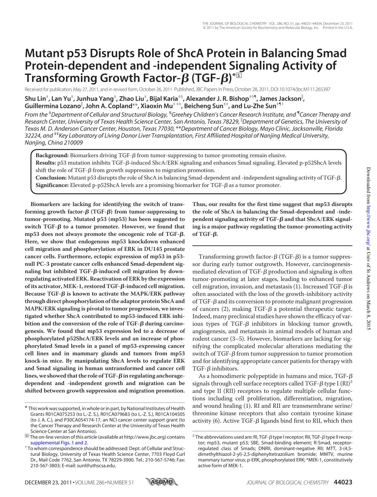 Book cover Mutant p53 Disrupts Role of ShcA Protein in Balancing Smad Protein-dependent and -independent Signaling Activity of Transforming Growth Factor-  (TGF- )