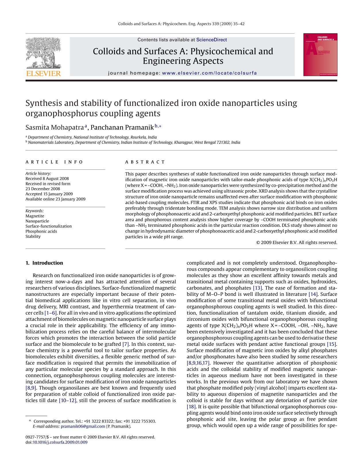 Copertina del libro Synthesis and stability of functionalized iron oxide nanoparticles using organophosphorus coupling agents
