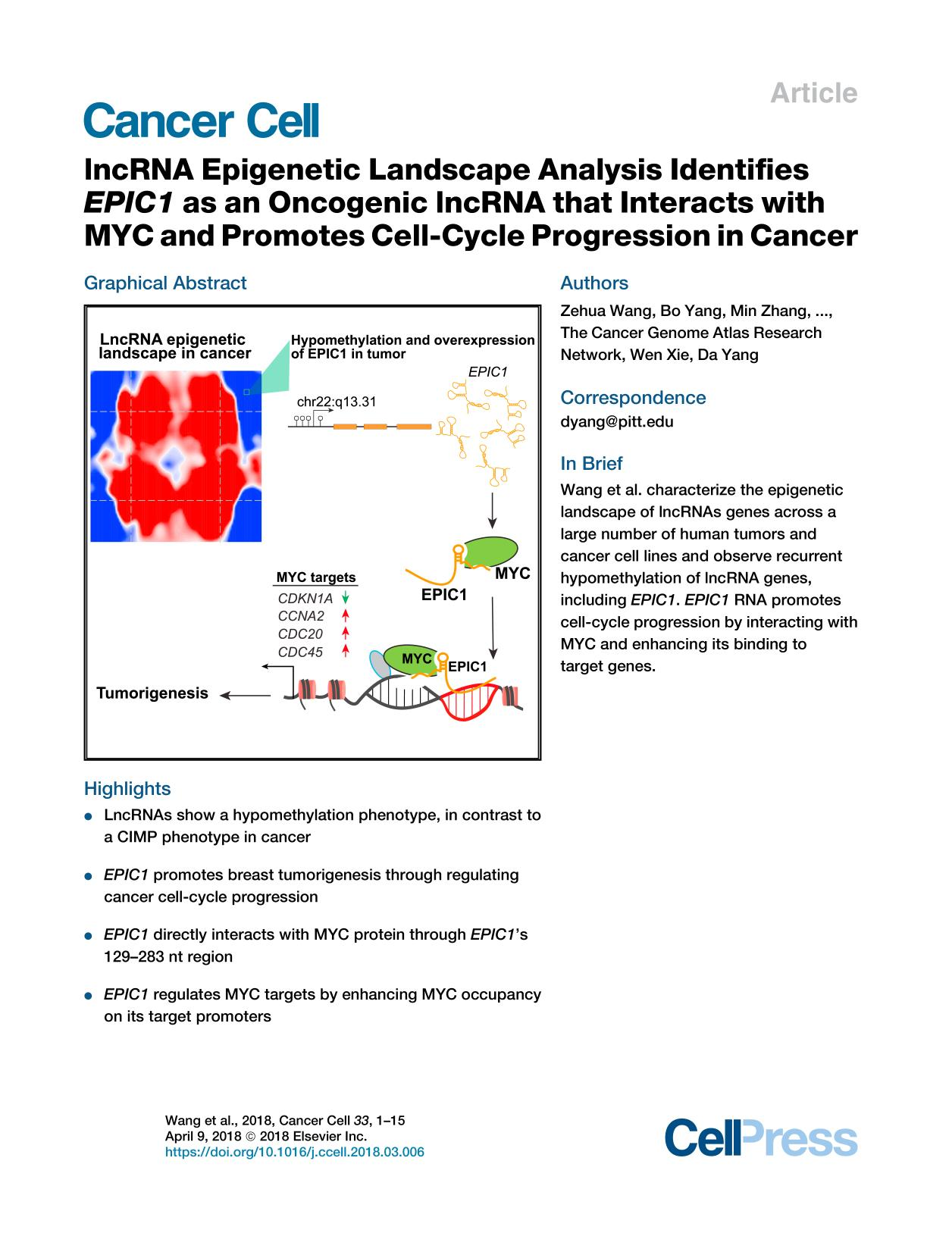 Okładka książki lncRNA Epigenetic Landscape Analysis Identifies  EPIC1  as an Oncogenic lncRNA that Interacts with MYC and Promotes Cell-Cycle Progression in Cancer