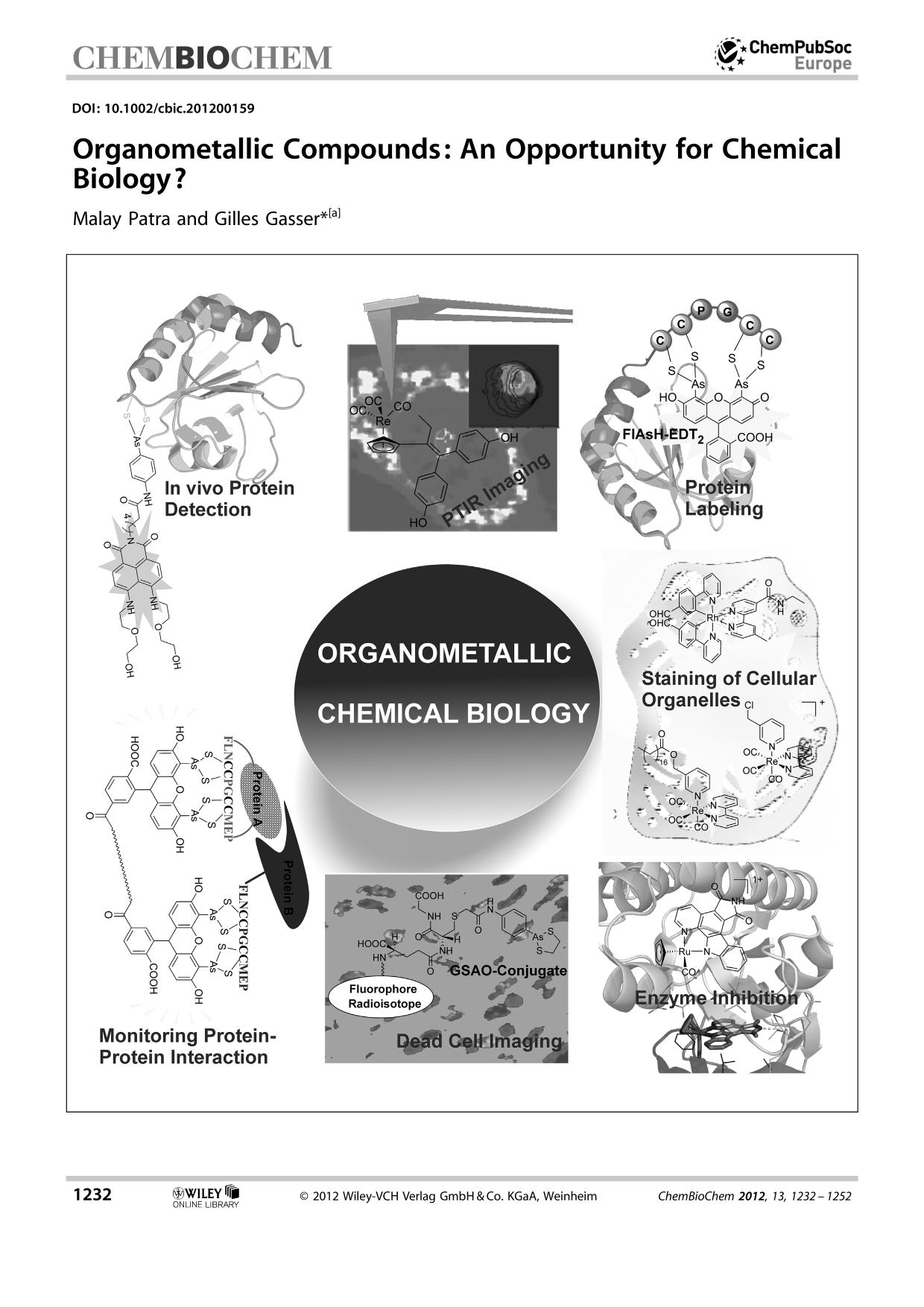 Portada del libro Organometallic Compounds: An Opportunity for Chemical Biology?