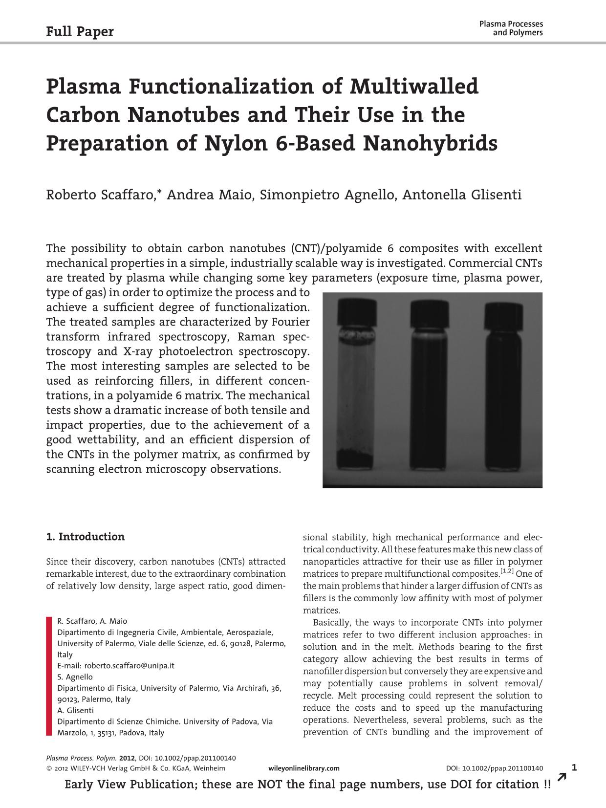 Okładka książki Plasma Functionalization of Multiwalled Carbon Nanotubes and Their Use in the Preparation of Nylon 6-Based Nanohybrids